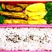 10/24 鶏もも肉のスパイス焼き