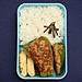 3/14 ピーマンの肉詰め弁当